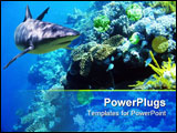 PowerPoint Template - shark swimming over reef with fish