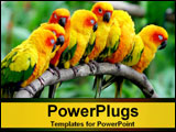 PowerPoint Template - yellow birds sitting on branch