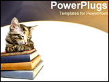PowerPoint Template - Kitten curled on stack of books.