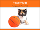 PowerPoint Template - A sadness kitten and basketball with soft shadow on a white background