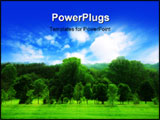 PowerPoint Template - Summer landscape of young green forest with bright blue sky