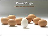 PowerPoint Template - the white egg among with golden eggs
