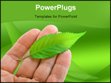 PowerPoint Template - Green fresh Leaf on hand on green background