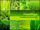 PowerPoint Template - Collage nature green background