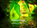 PowerPoint Template - beautiful green leaves with a reflection in the water