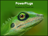 PowerPoint Template - a green tree lizard.