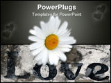PowerPoint Template - Love carved into a stone block with a sunflower on it