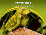 PowerPoint Template - A yellow-crowned parrot teasing at its partner.
