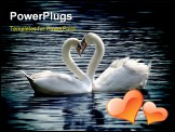 PowerPoint Template - loving swans forming a heart on a sunny day