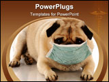 PowerPoint Template - Sick or contagious pug wearing a medical mask