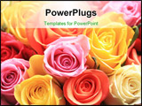 PowerPoint Template - A mixed rose bouquet of different colors