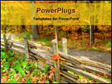 PowerPoint Template - close view of forest