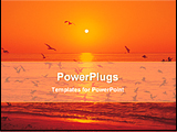 PowerPoint Template - birds flying in beach at the moment of sunset