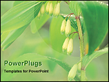 PowerPoint Template - close view of budding flower
