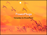 PowerPoint Template - birds returning home at sunset time