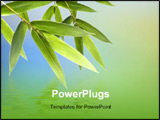 PowerPoint Template - Bamboo green leaves over abstract blurred background