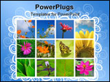 PowerPoint Template - Collage of spring flowers and nature made from 10 pictures