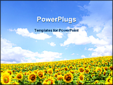 PowerPoint Template - image showing sunflower