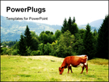 PowerPoint Template - Green meadow in mountains and cow