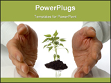 PowerPoint Template - Business men holding a plant between hands on white