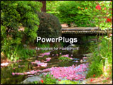 PowerPoint Template - A beautiful aspect from a Japanese park in spring
