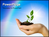 PowerPoint Template - Hand with a plant on a background of the blue sky and a rainbow