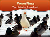 PowerPoint Template - do you stand out from the crowd?