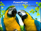 PowerPoint Template - two beautiful yellow and blue parrots in love