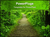 PowerPoint Template - Walking path in a green summer forest