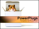 PowerPoint Template - Little hamster in a box