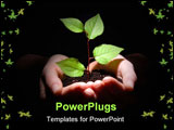PowerPoint Template - hands plant and soil showing concept of growth