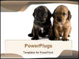 PowerPoint Template - a image of two cute puppies brothers