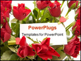 PowerPoint Template - bunch of beautiful red roses with blank ticket isolated on white