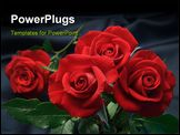 PowerPoint Template - red roses on satin ** Note: Slight graininess, best at smaller sizes