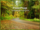 PowerPoint Template - Road winding through a forest in autumn