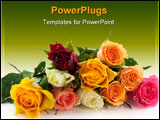 PowerPoint Template - Bouquet many colorful roses isolated over white