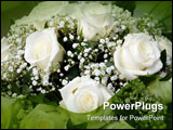 PowerPoint Template - close-up shot of a bouquet of white roses