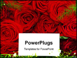 PowerPoint Template - love text message on a rose background