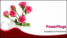 PowerPoint Template - roses in tea cup