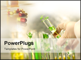 PowerPoint Template - Close-up of small plants in test tubes