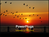PowerPoint Template - Flight of birds on a background of a rising sun