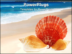 PowerPoint Template - Three seashells put together over white background.