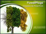 PowerPoint Template - Conceptual tree in four seasons