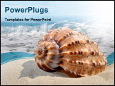 PowerPoint Template - Conch shell on beach