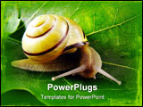 PowerPoint Template - image from nature series: snail on leaf