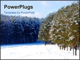 PowerPoint Template - Beautiful snow-covered pine forest a winter landscape