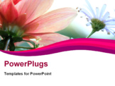 PowerPoint Template - soft floral shot from below with shallow depth of field