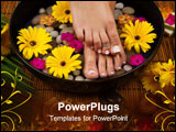 PowerPoint Template - Spa treatment with aromatic gerbera daisies healing stones olive oil soaps and herbal water