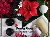 PowerPoint Template - spa beauty exotic tropical flowers sea shells stones towels salt soap on green leaves