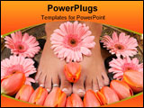 PowerPoint Template - Beautiful tulips and gerbera daisies and pedicured pampered feet